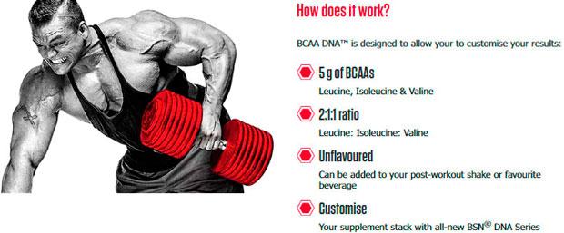 BSN-BCAA-DNA-foto