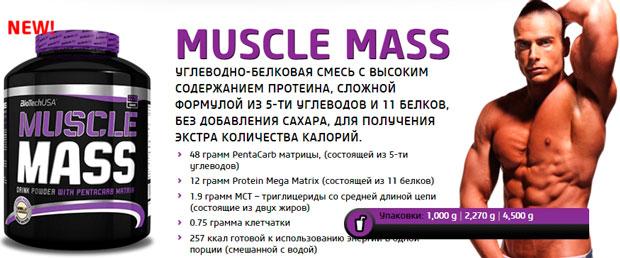 BioTech-USA-Muscle-Mass-banner