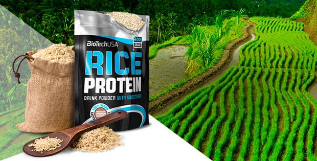 BioTech-USA-Rice-Protein-banner