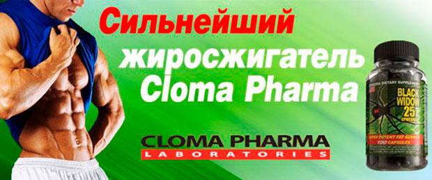 Black-Spider-Cloma-Pharma-banner