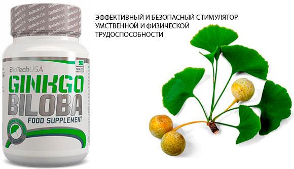 Ginkgo-Biloba-BioTech-USA-banner