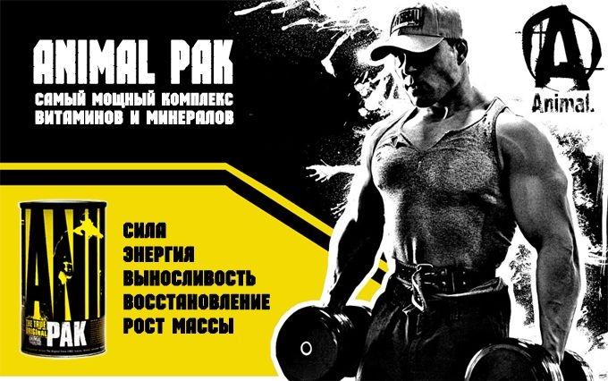 Animal Pak 44 Universal Nutrition купить в Киеве и Украине